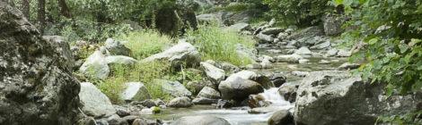 Parma, 26 giugno 2018 - Giornata informativa sui deflussi ecologici nel distretto idrografico del fiume Po